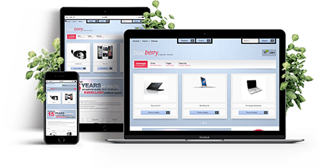 Blueberry - Joomla! Template | Features of the template