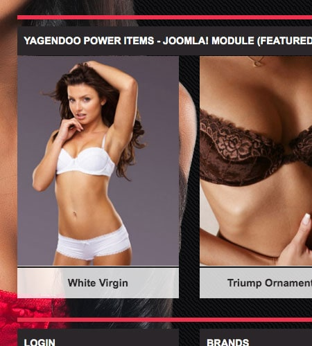 Lingerie - Joomla! Template | Demo packages and Yagendoo Joomla! module included