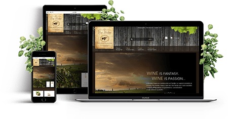 Vino Veritas - Joomla! Template | Features of the template