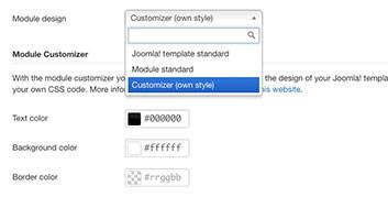 Parameters - Display Settings - Customizer