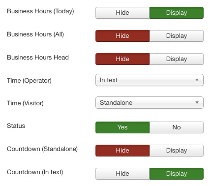 Screenshot: display settings | Power Support & Business Hours – Joomla! Module